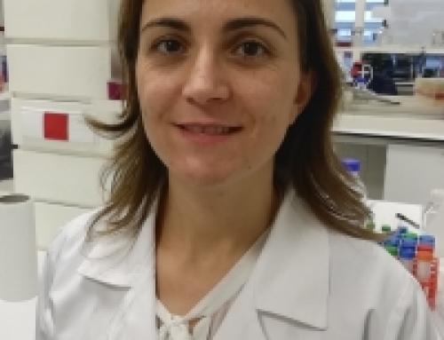 Sandra Pinhanços